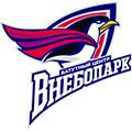 "Логотип: батутный центр ""Внебопарк"""