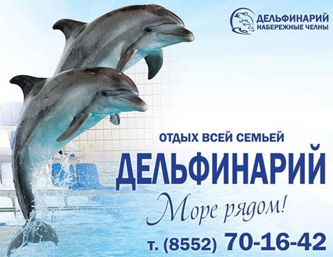 Новые артисты в Набережночелнинском дельфинарии!