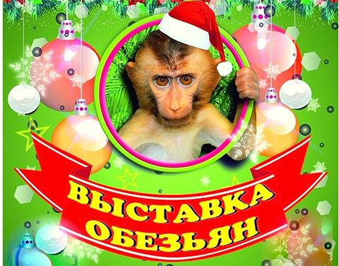 Выставка обезьян посетила Набережные Челны!