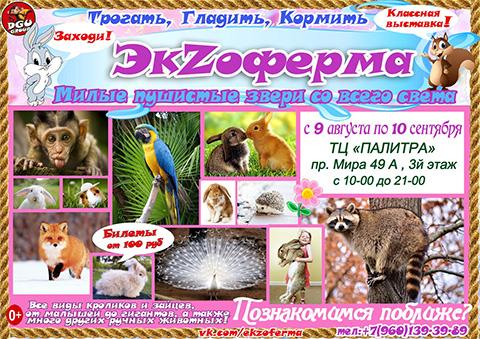 Контактная выставка животных в Набережных Челнах!
