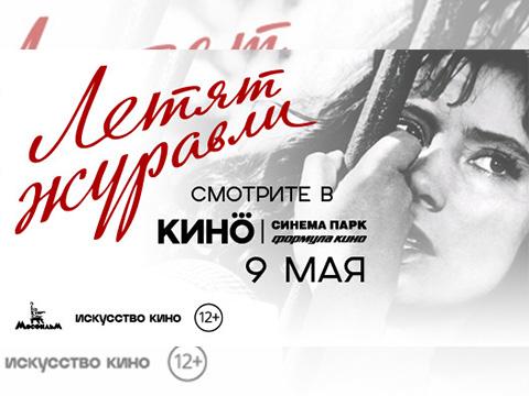 «Летят журавли» 9 мая в кинотеатре СИНЕМА ПАРК