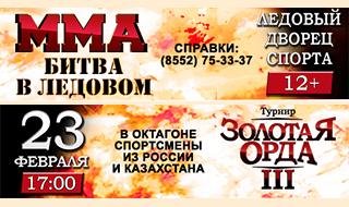 Бойцовский турнир по правилам ММА в Набережных Челна - Золотая орда!